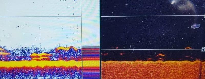 Sonar Graph