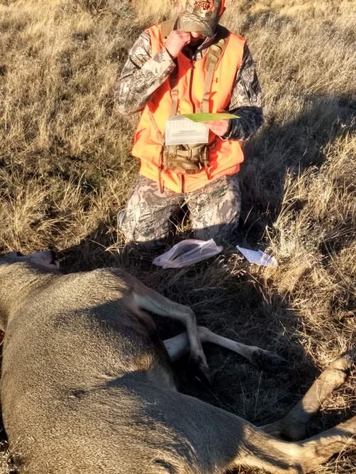 Montana Mule Deer Hunting