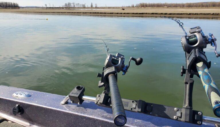 Shallow Water Walleye Trolling