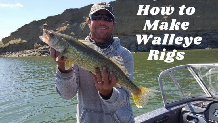Walleye Rigs