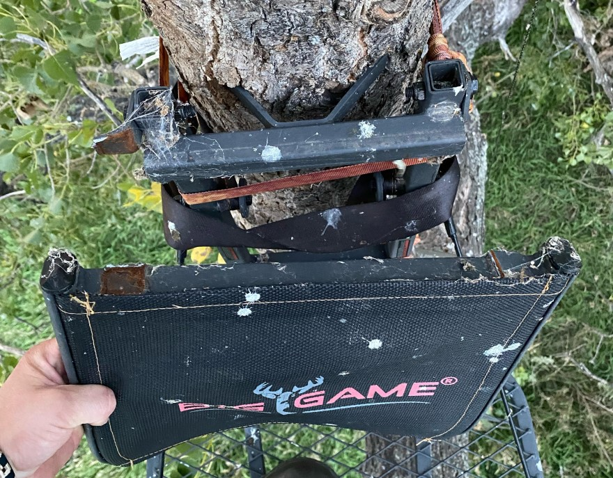 faulty tree stand